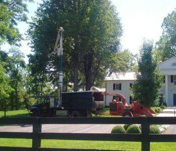 Horse Farm Tree Services