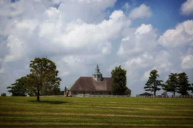 Horse Farm | Tree Service Lexington KY