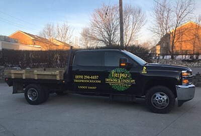 Flatbed Work Truck | Tree Trimming Company near Versailles KY